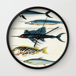 Antique Fish Louis Renard Vintage Scientific Illustration Species Labeled Diagram Encyclopedia Lithograph Wall Clock