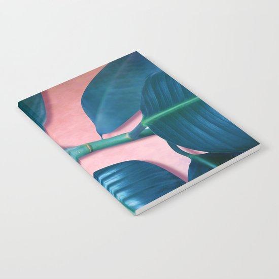 Ficus elastica Notebook