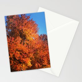 Fall Across the Street Stationery Cards