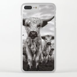Highland Cattle Mixed Breed Mono Clear iPhone Case