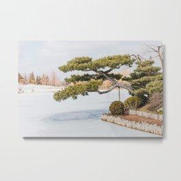 Winter at the Japanese Garden, No 2 Metal Print