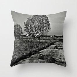 Dark Autumnal Spirit of October Throw Pillow