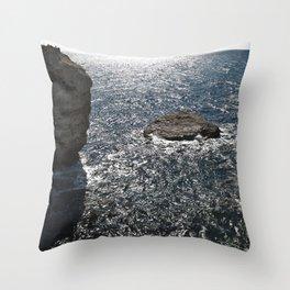 ----- Throw Pillow