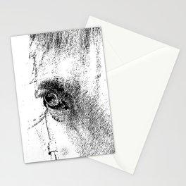 Eye of Horse Stationery Cards