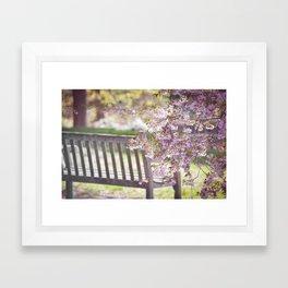 Spring Bench Framed Art Print
