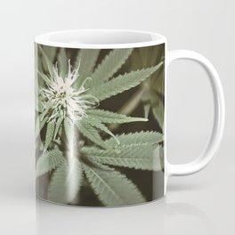 MarryJane Coffee Mug