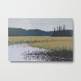 The Grassy Bay, Algonquin Park Metal Print