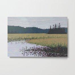 The Grassy Bay, Algonquin Park Metal Print
