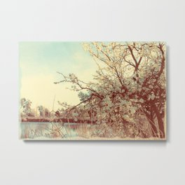 Hello Spring! (White Cherry Blossom by the Lake) Metal Print