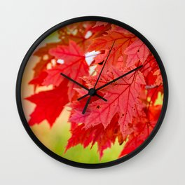 Red Maple Leaf Tree [Fall Nature Photography] Wall Clock