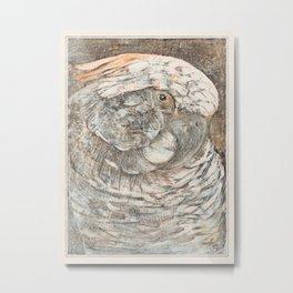 Theo van Hoytema - Kop van een papegaai Metal Print