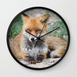 Fox_20141201_by_JAMFoto Wall Clock