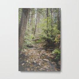 The Montana Collection - Shortcut Creek Metal Print