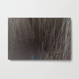 WATER THOUGH REEDS Metal Print