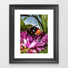 Bee on flower 9 Framed Art Print