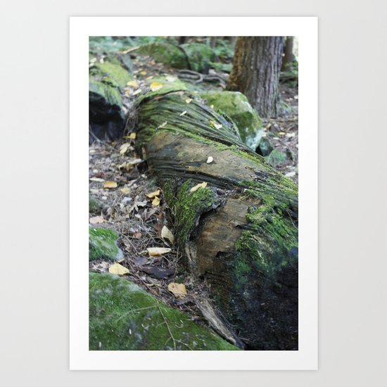 The Twisted Tree Art Print