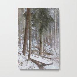 footbridge in the forest Metal Print