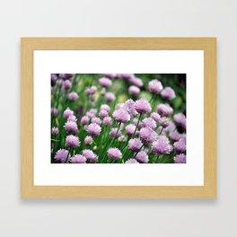 Flower puffs in the breeze Framed Art Print