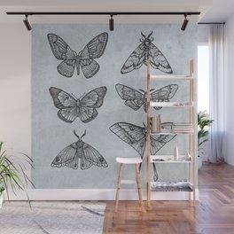 Moths & Butterflies II Wall Mural