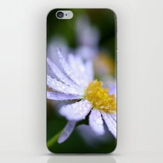 flower with raindrops  iPhone & iPod Skin