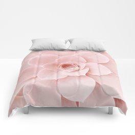 Blush Succulent Comforters