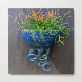 Succulent in Blue Wall Sconce Metal Print