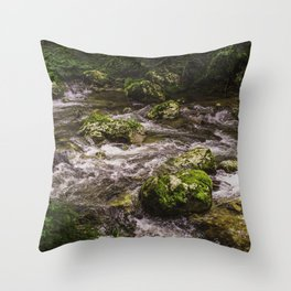 Wild slovenija Throw Pillow