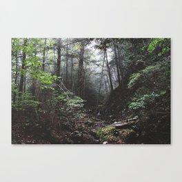 Stevens Glen IX Canvas Print
