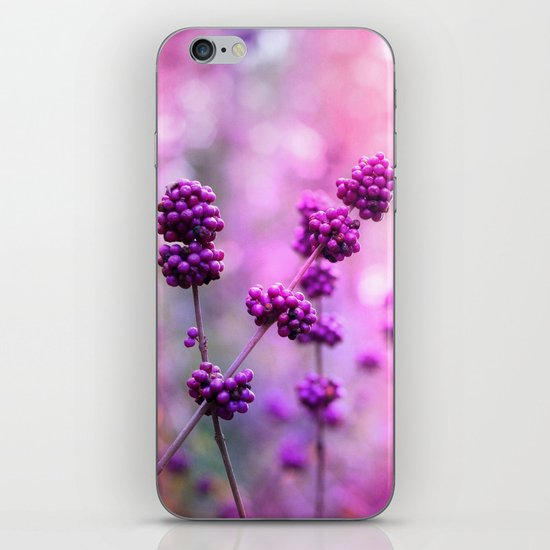The Royal Treatment iPhone & iPod Skin