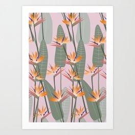 Bird of Paradise - pink Art Print