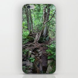 subterranean iPhone Skin