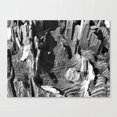 A termites landscape Canvas Print