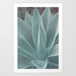 Azul Succulent Agave Plant Kunstdrucke