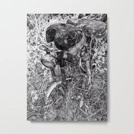 Motocycle Metal Print