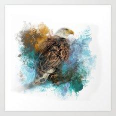 Expressions Bald Eagle Art Print