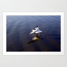 Walk On Water Art Print