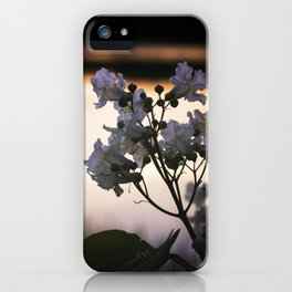 Flowers At Sunset - Melrose, MA 2019 iPhone Case