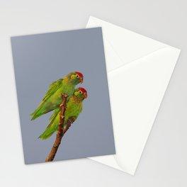Varied Lorikeets (Psitteuteles versicolor) Stationery Cards