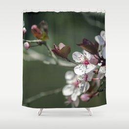 Morning Blossom Shower Curtain