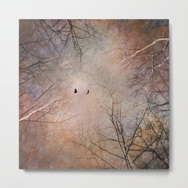 Looking Within - Dramatic sky with birds and trees photo art Metal Print