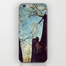 Winter Walking iPhone Skin