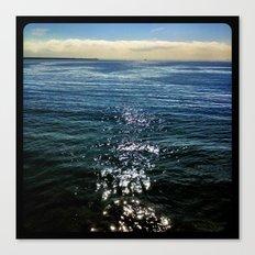Reflection. Canvas Print