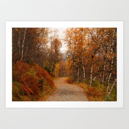 Winding country road in a fall forest Art Print