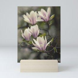 Branch of fresh magnolia Mini Art Print