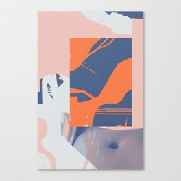 Via Haŭto Canvas Print
