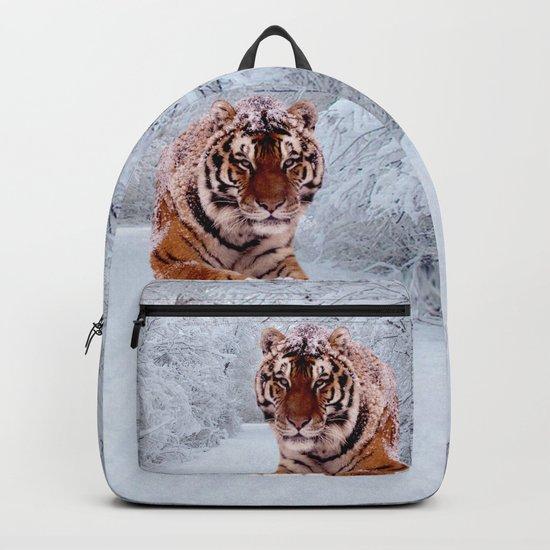 Tiger and Snow by erikakai