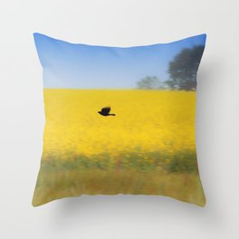 Blackbird over the canola field Throw Pillow