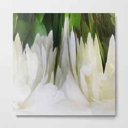 501 - White Peony Abstract Metal Print