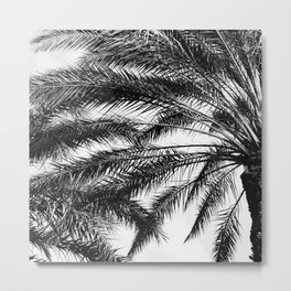 Palm Trees in Noir Entwining in a Tropical Breeze Metal Print