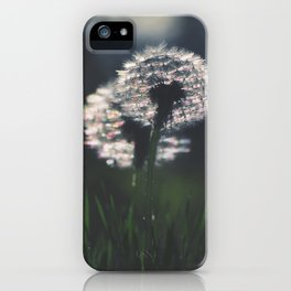 whispers in the wind iPhone Case